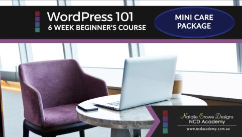 WordPress 101 + Mini Care Package
